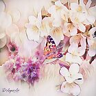 Painted Butterfly Dreams Squared by TheresaC1953