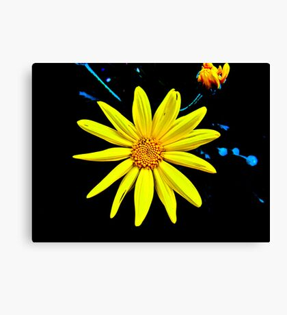 A Splash of Sunshine Canvas Print