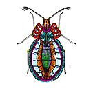 Bejewelled Beetle by Emilie Otto