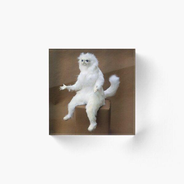Persian Cat Room Guardian Acrylic Block