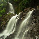Bali Waterfall, Ubud by Bobby McLeod