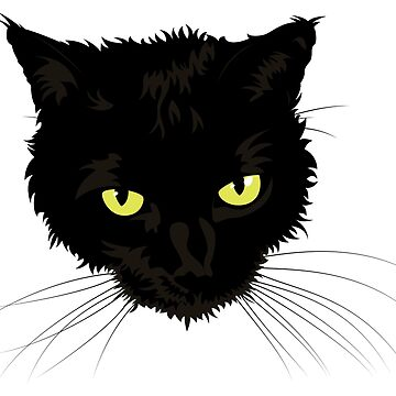 Beautiful Black Cat Face by mydragonzeatyou