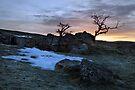 A Wharfedale Dawn by SteveMG