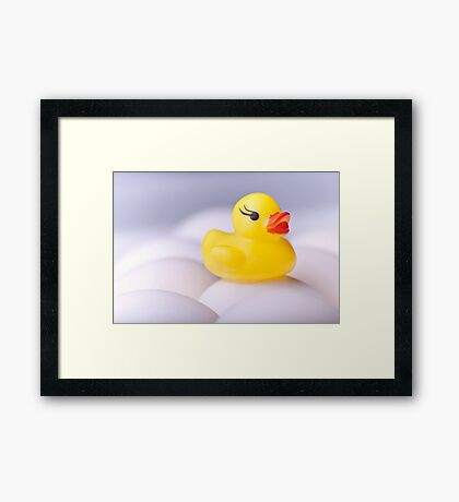 Sitting Duck Framed Print