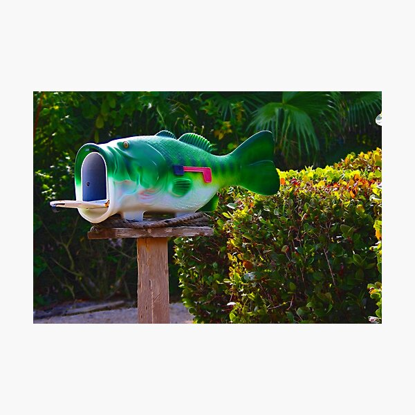 Big Mouth Photographic Print