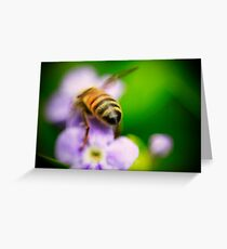 Bee Bum Greeting Card