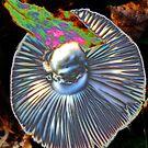 Physcedelic Mushroom by Chappy