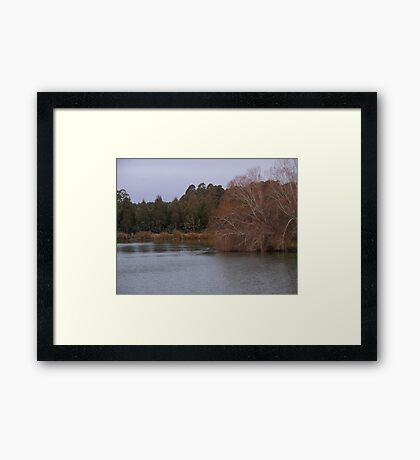 Dam fine Framed Print