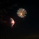 July 4th Fireworks_2009 by Jonathan Bartlett