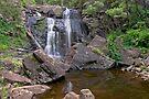 Stevensons Falls Reflection Pond by mspfoto