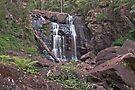 Dusk at Stevenson Falls by mspfoto