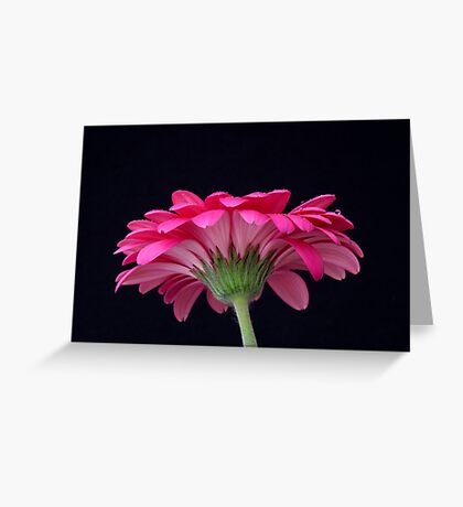 Up close and personal Greeting Card