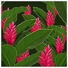 Tropische Blumen von RebecaZum