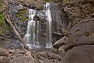 Stevenson Falls by mspfoto