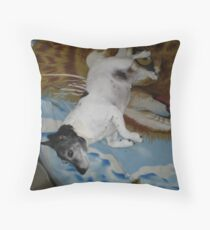 Eddie - He loved a roll Throw Pillow