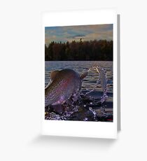 Rainbow Rumble Seat Greeting Card