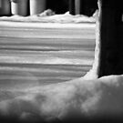 Shadows on the Snow. by Billlee