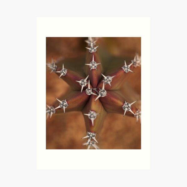 Jeweled Star Art Print