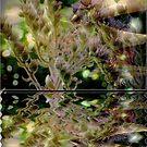 Garden Fractal by maf01