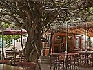 Under the Trumpet tree by awefaul