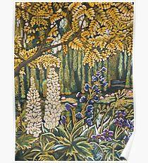 White Lupins in Monets Garden Poster