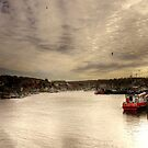 Whitby Harbour. by stanegg