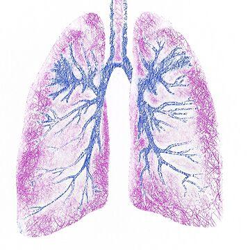 Lungs (Biro) by john76
