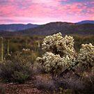 A Desert Monet by Sue  Cullumber