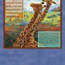 Séparés (Le girafe) by Gwenn Seemel