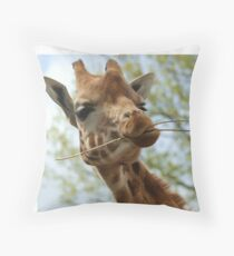 Would You Like Some? Throw Pillow