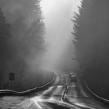 Traveling in a foggy morning in Oregon by cheesim
