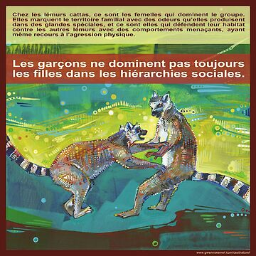 Défendre son territoire à elle (Le lémur catta) by gwennpaints