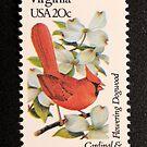 1982 20c Virginia State Bird & Flower Postage Stamp by Chris Coates