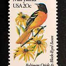1982 20c Maryland State Bird & Flower Postage Stamp by Chris Coates