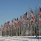Avenue of Flags by Monnie Ryan