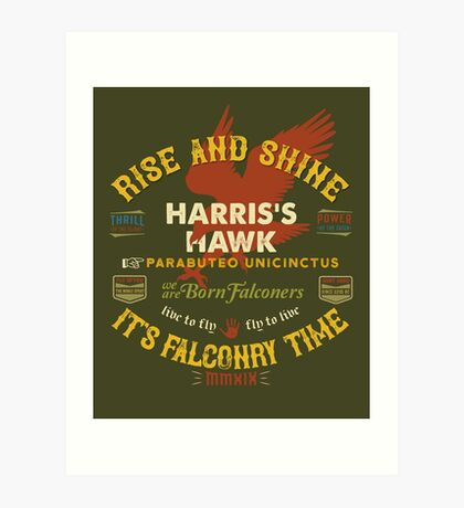 Harris's Hawk falconer's Supplies, Falconry Harris Hawkers Clothing and Gifts Art Print