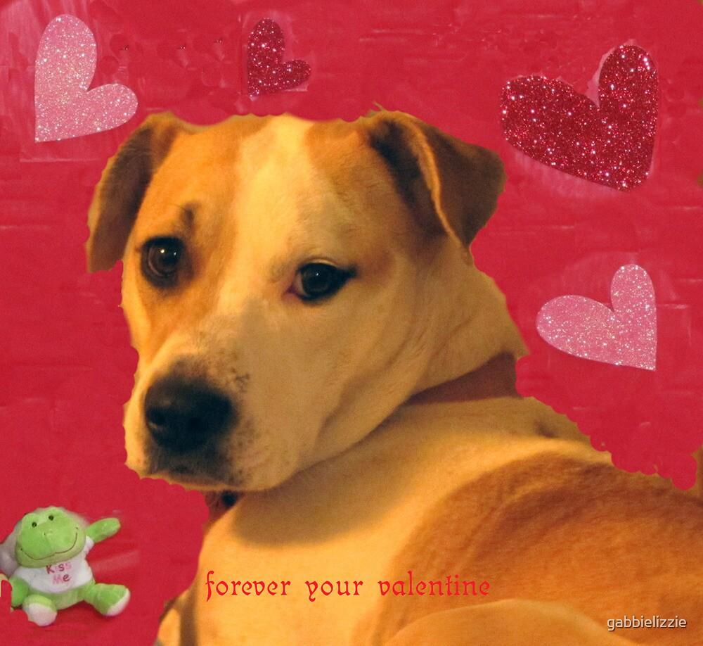 my valentine by gabbielizzie