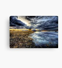 Willow Winter Clouds Canvas Print