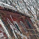 Ice Barn by Wendie