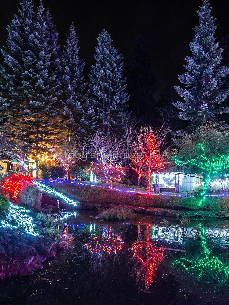 Christmas Lights at the Japanese Gardens by tobysnelgrove