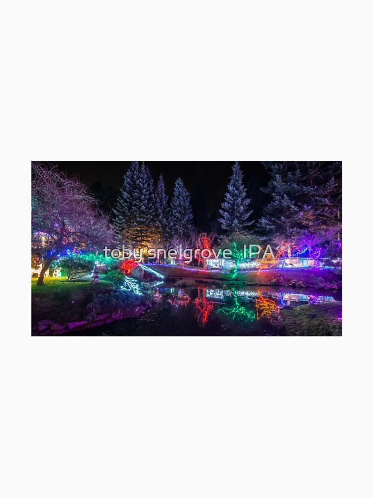 Christmas Lights at Mayne Island's Japanese Gardens by tobysnelgrove