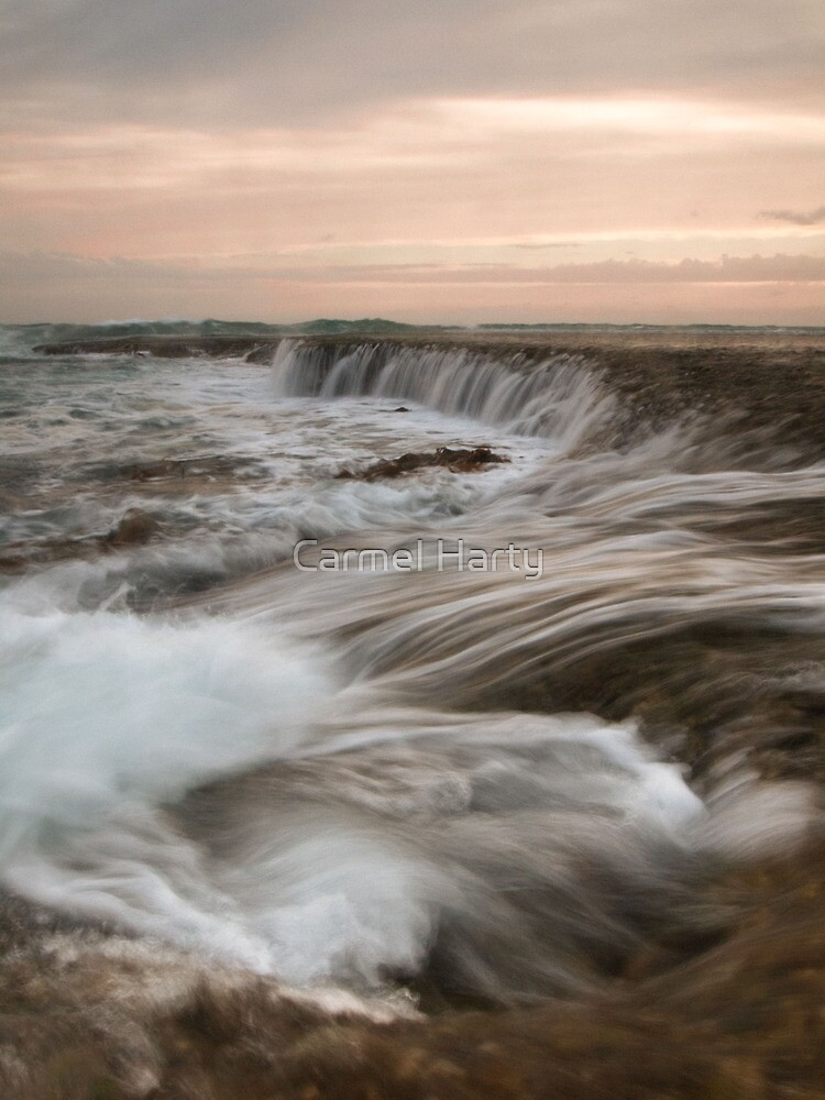 The Water Rush by Carmel Harty