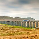 Ribblehead, Ingleborough and Train by Stephen Knowles