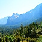 Yosemite National Park landscape photography. Beautiful mountain, summer  forest, green trees  and blue sky. by naturematters