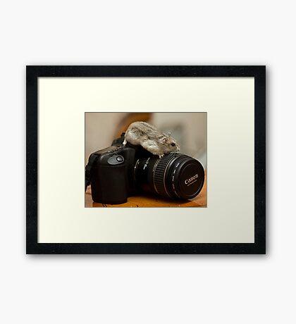 I love my Canon Framed Print