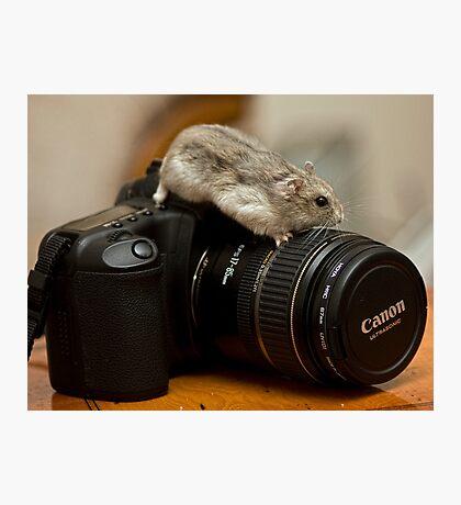 I love my Canon Photographic Print