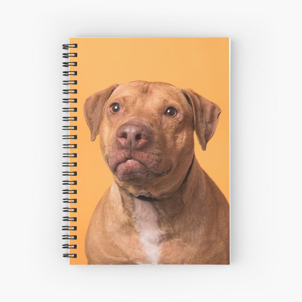 Cirque Spiral Notebook