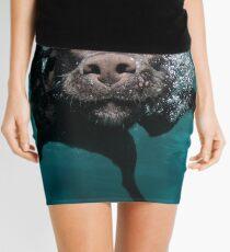 Minifalda Perro lindo bajo el agua! - perro nadador