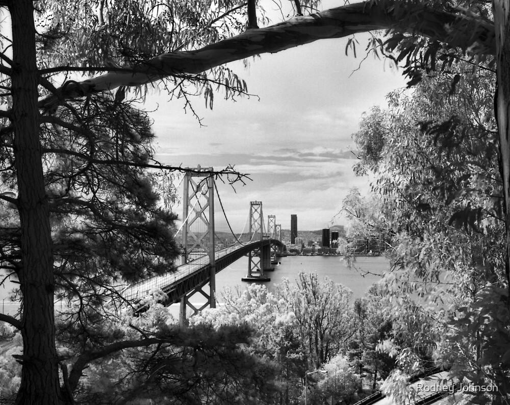 San Francisco–Oakland Bay Bridge, Western Span by Rodney Johnson