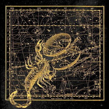 Scorpio Constellation, Astronomy, Astrology, Zodiac, Vintage Engraving Map by MySunLife